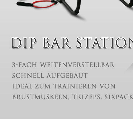 dip bar body station dipstation push ups dips klimmzugstange hantelbank fitness ebay. Black Bedroom Furniture Sets. Home Design Ideas